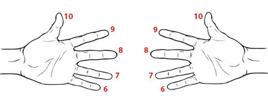 Lesson 24: Finger Multiplication